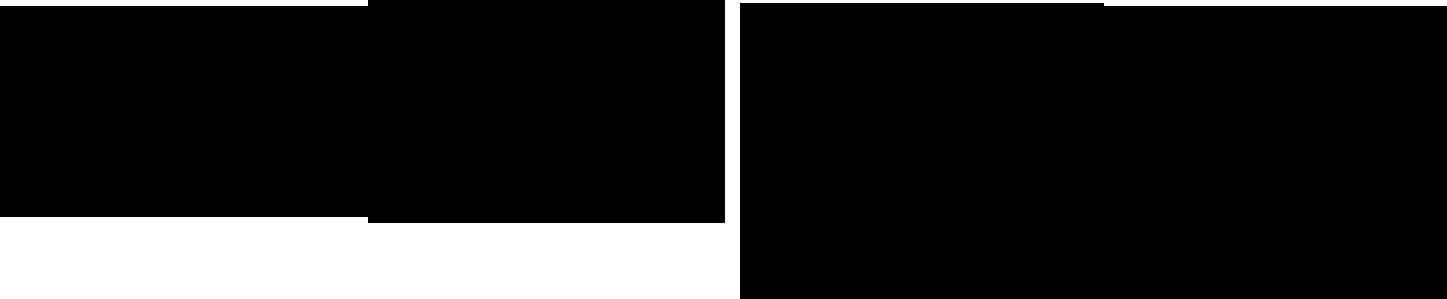 logo_rocher_noir